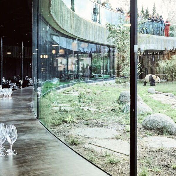 Zoologisk Have København er ny partner hos Danske Konferencecentre