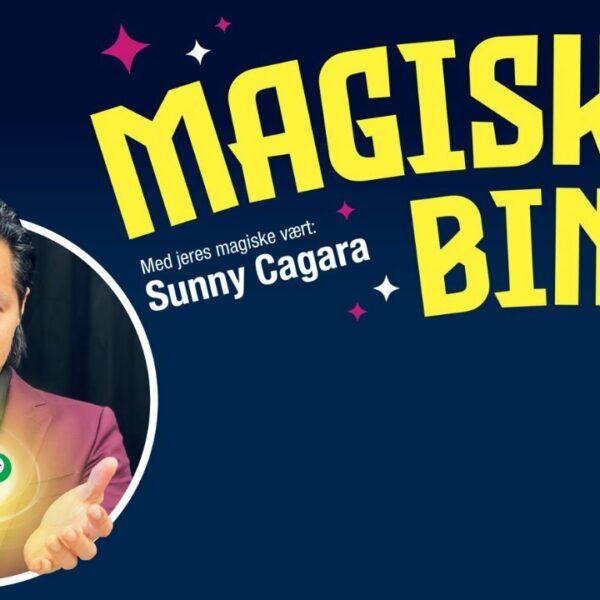 Magisk Bingo til jeres online julefrokost?